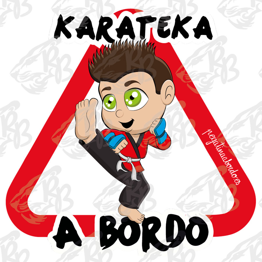 70508-DEPORTES-KARATEKA-A-BORDO