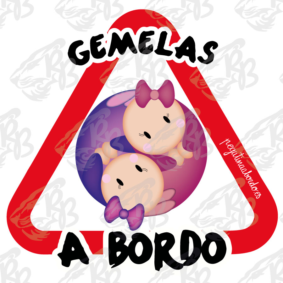 GEMELAS ROSA/VIOLETA  A BORDO
